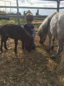 Kindern ethischen Umgang mit Tieren vermitteln
