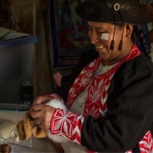 Kapok, Maiswatte, Recycling Polyester: Füllmaterial für Kuscheltiere