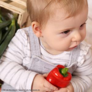 2017-01-01 Gesunde Säuglings- und Kinderernährung Titel