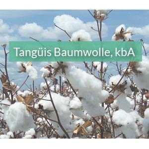 Bio Tangüis Baumwolle aus Peru