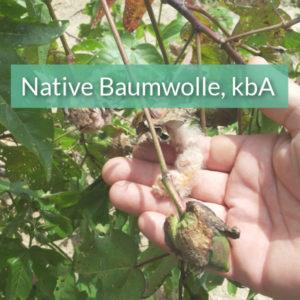 Unser Material Bio Native Baumwolle Bunte Inka Baumwolle