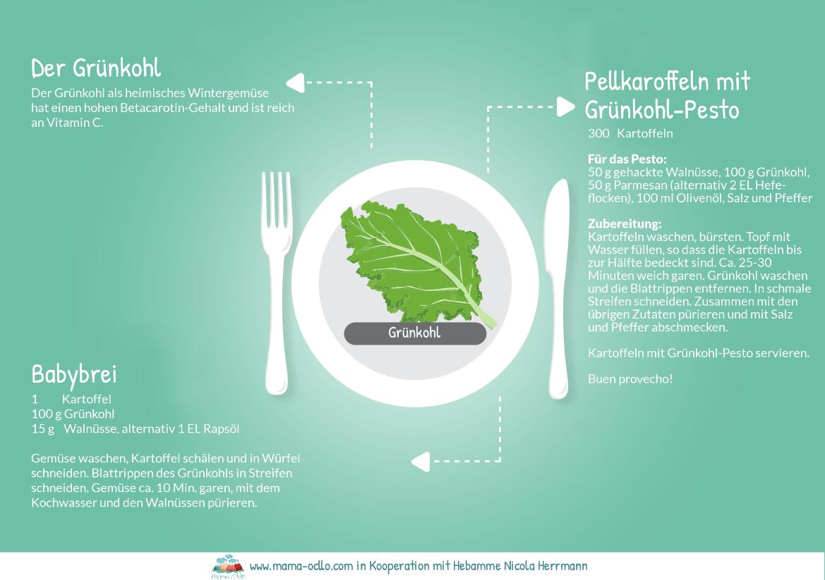 Der Grünkohl | Beikost und Familienküche