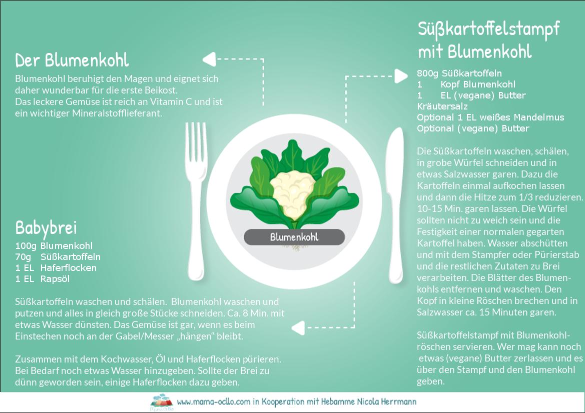 Blumenkohl_Beikost_Familienküche_Rezepte_ final