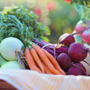 Gemüse für Kinder_Gesundes Essen für Kleinkind